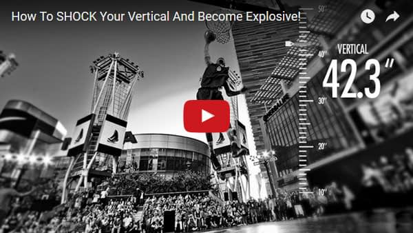 The Vert Shock Reviews